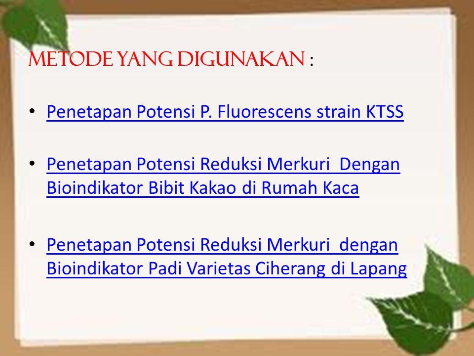 Metode yang digunakan : Penetapan Potensi P. Fluorescens strain KTSS Penetapan Potensi Reduksi Merkuri Dengan Bioindikator Bibit Kakao di Rumah Kaca P