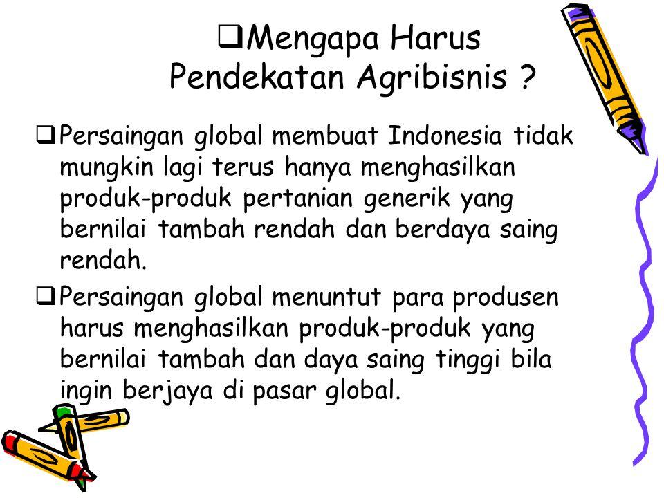  Mengapa Harus Pendekatan Agribisnis ?  Persaingan global membuat Indonesia tidak mungkin lagi terus hanya menghasilkan produk-produk pertanian gene
