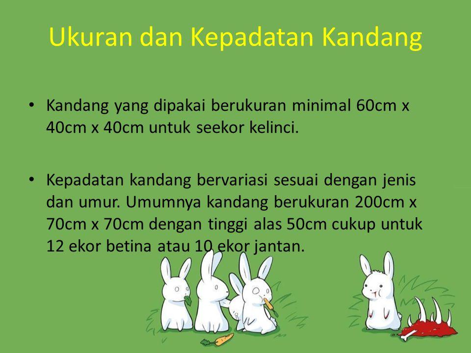 Ukuran dan Kepadatan Kandang Kandang yang dipakai berukuran minimal 60cm x 40cm x 40cm untuk seekor kelinci. Kepadatan kandang bervariasi sesuai denga