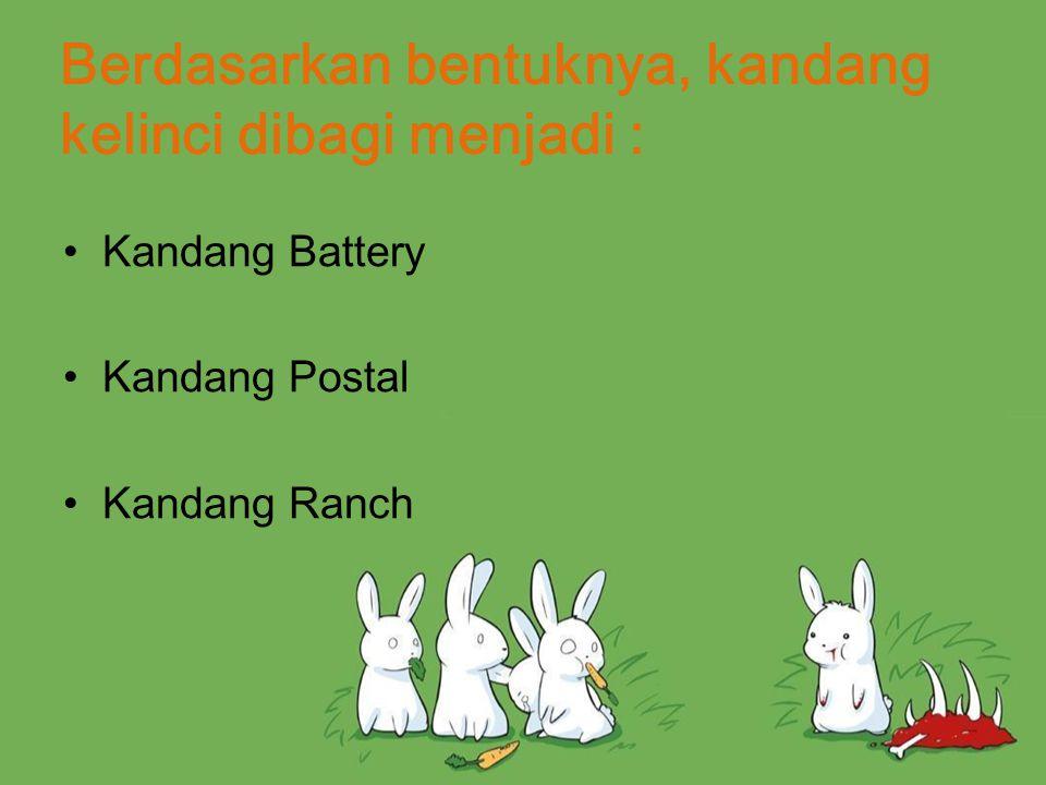 Kandang Battery Jenis kandang yang setiap satu ruangan berderat hanya diisi oleh satu ekor kelinci dengan konstruksi – flatdech battery (berjajar), – tier battery (bertingkat), – pyramidal battery (susun piramid) Kandang ini umumnya digunakan untuk mengawinkan kelinci.