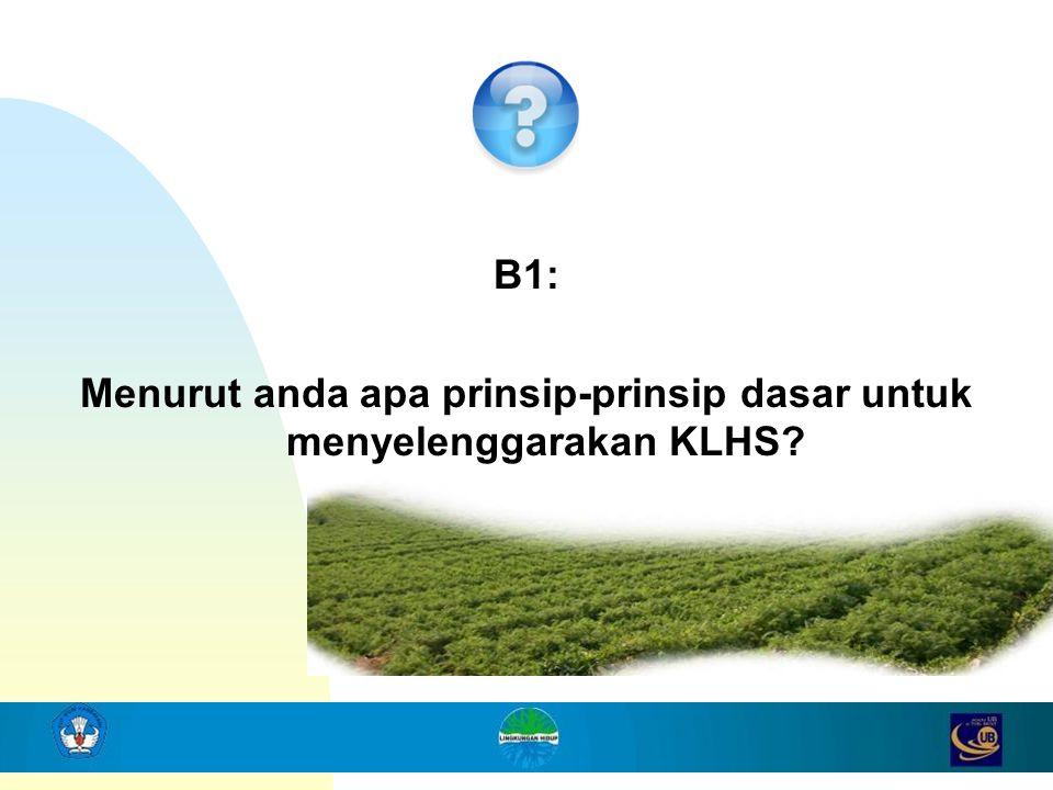 5 B1: Menurut anda apa prinsip-prinsip dasar untuk menyelenggarakan KLHS?