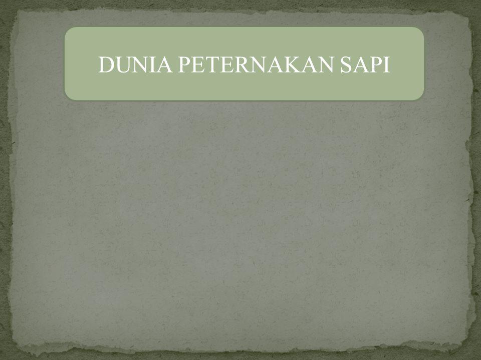 DUNIA PETERNAKAN SAPI