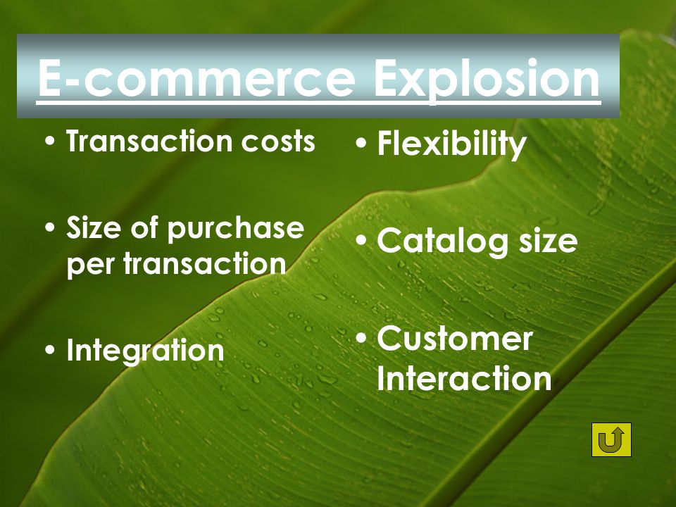 E-commerce Explosion Transaction costs Size of purchase per transaction Integration Flexibility Catalog size Customer Interaction