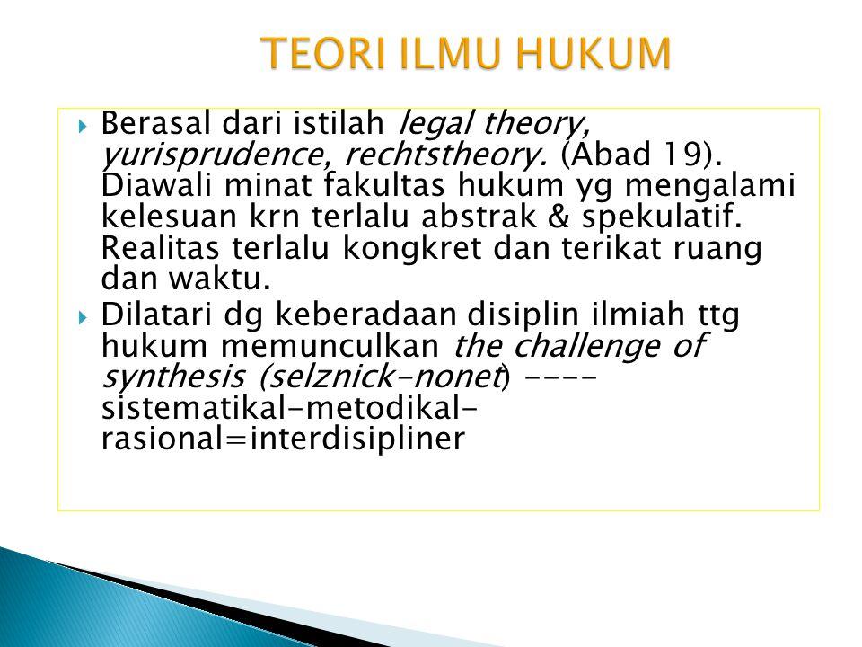  Berasal dari istilah legal theory, yurisprudence, rechtstheory. (Abad 19). Diawali minat fakultas hukum yg mengalami kelesuan krn terlalu abstrak &