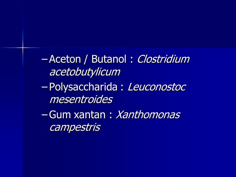 –Aceton / Butanol : Clostridium acetobutylicum –Polysaccharida : Leuconostoc mesentroides –Gum xantan : Xanthomonas campestris