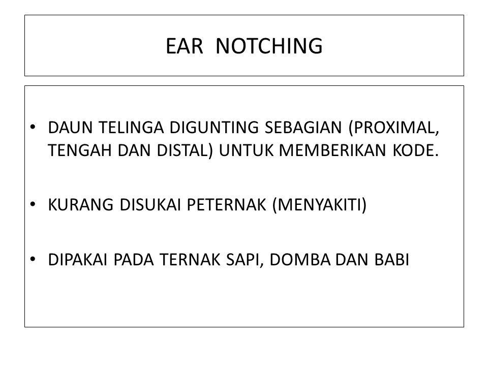 EAR NOTCHING DAUN TELINGA DIGUNTING SEBAGIAN (PROXIMAL, TENGAH DAN DISTAL) UNTUK MEMBERIKAN KODE. KURANG DISUKAI PETERNAK (MENYAKITI) DIPAKAI PADA TER
