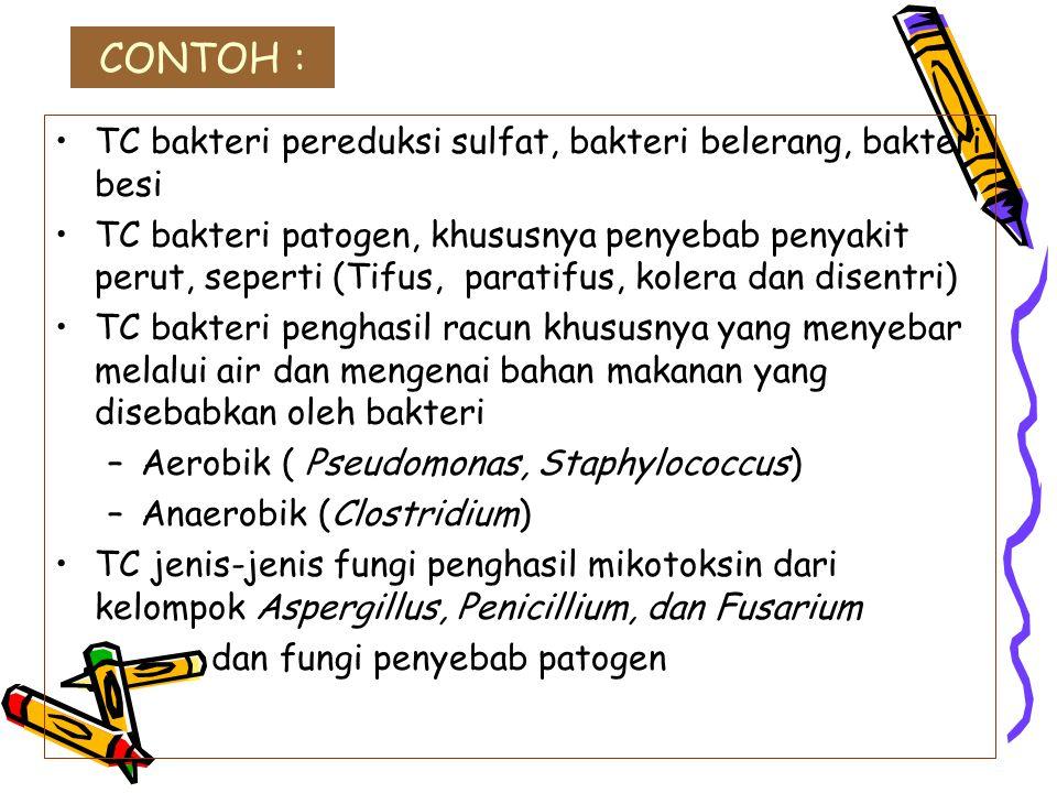CONTOH : TC bakteri pereduksi sulfat, bakteri belerang, bakteri besi TC bakteri patogen, khususnya penyebab penyakit perut, seperti (Tifus, paratifus,