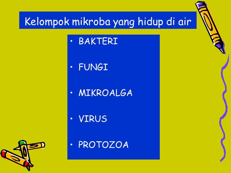 Kelompok mikroba yang hidup di air BAKTERI FUNGI MIKROALGA VIRUS PROTOZOA