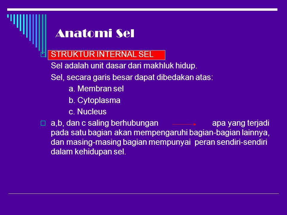 Anatomi Sel  STRUKTUR INTERNAL SEL Sel adalah unit dasar dari makhluk hidup. Sel, secara garis besar dapat dibedakan atas: a. Membran sel b. Cytoplas