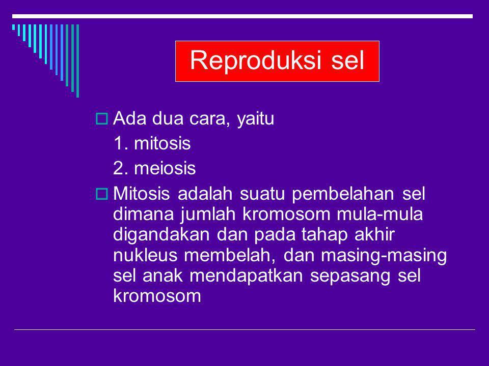 Reproduksi sel  Ada dua cara, yaitu 1. mitosis 2. meiosis  Mitosis adalah suatu pembelahan sel dimana jumlah kromosom mula-mula digandakan dan pada