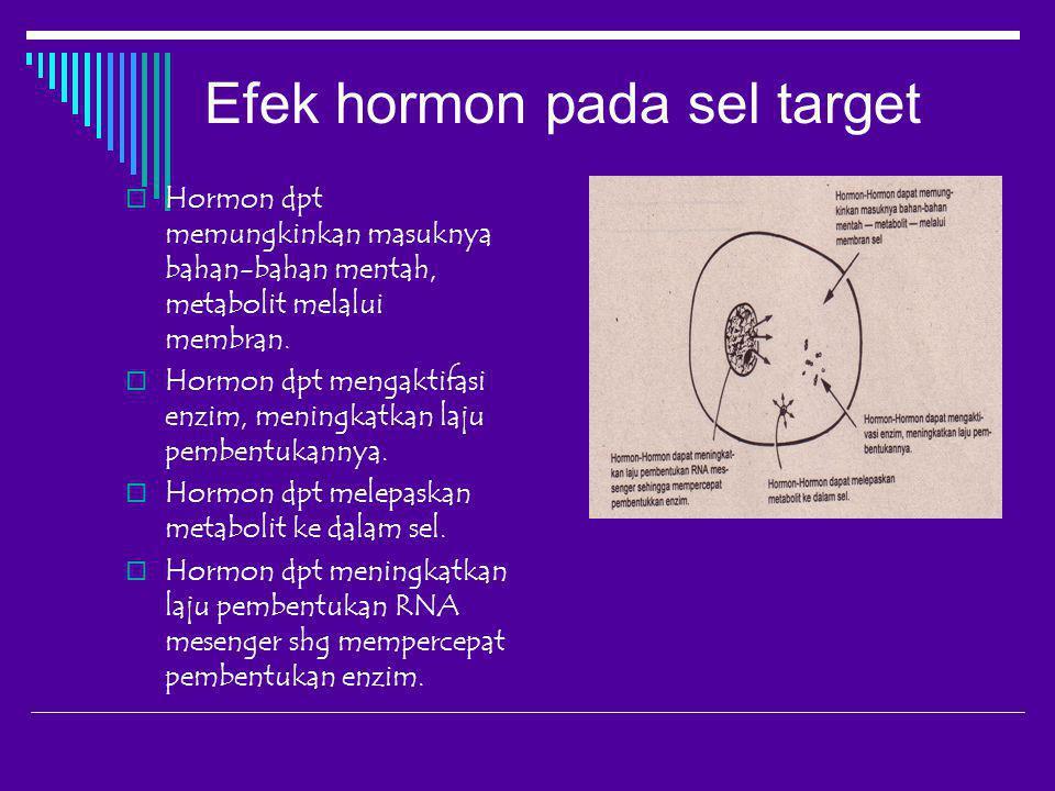 Efek hormon pada sel target  Hormon dpt memungkinkan masuknya bahan-bahan mentah, metabolit melalui membran.  Hormon dpt mengaktifasi enzim, meningk