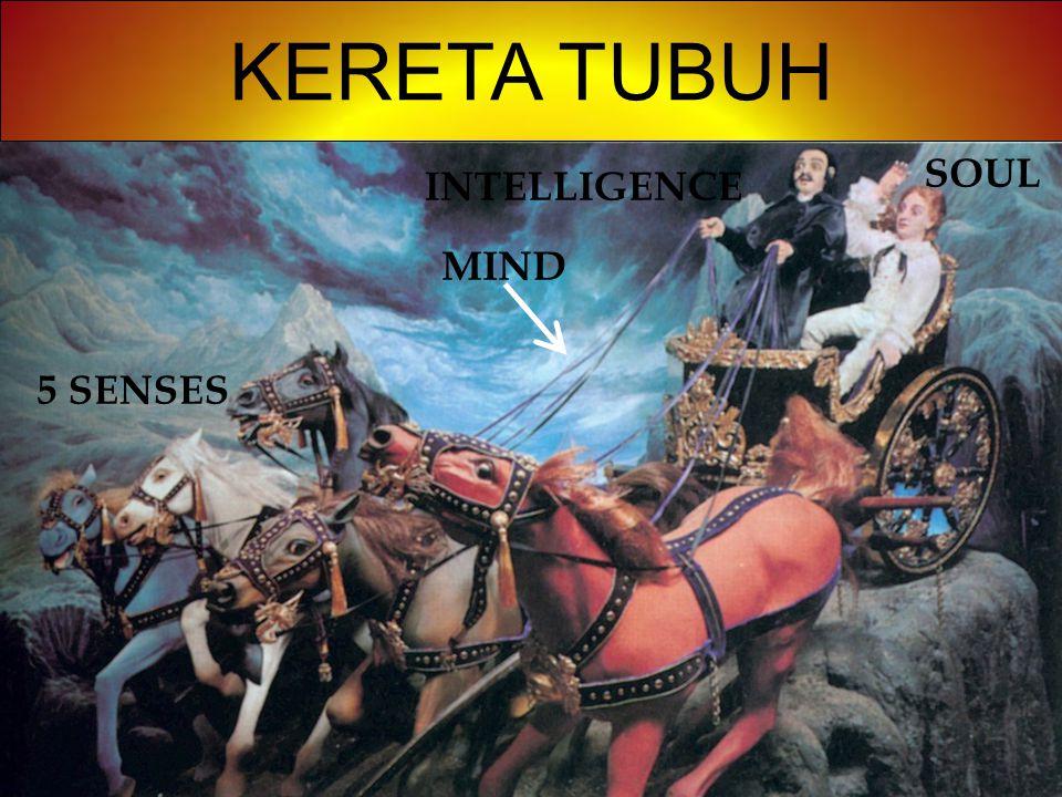 KERETA TUBUH 5 SENSES MIND INTELLIGENCE SOUL