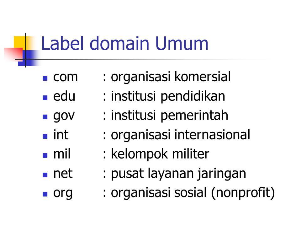 Label domain Umum com: organisasi komersial edu: institusi pendidikan gov: institusi pemerintah int: organisasi internasional mil: kelompok militer ne