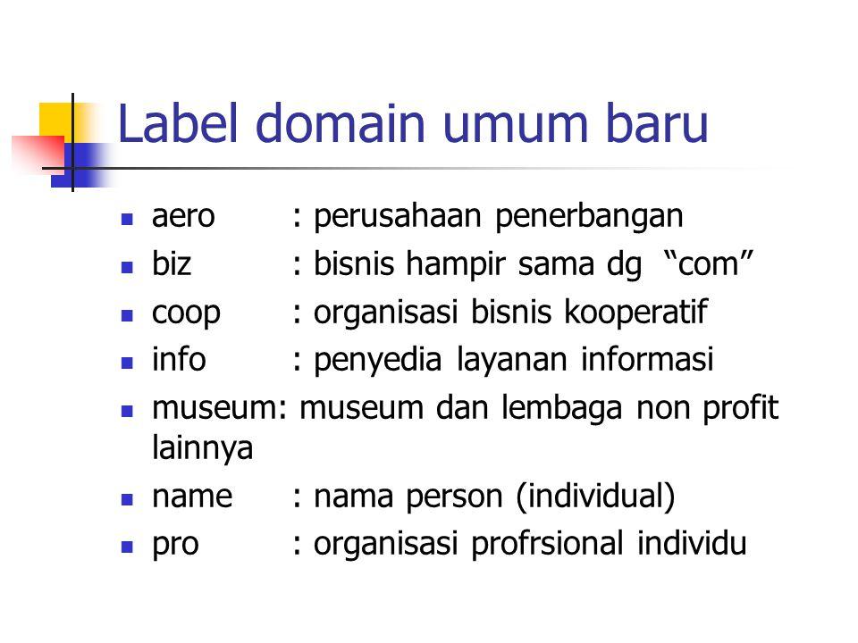 """Label domain umum baru aero: perusahaan penerbangan biz: bisnis hampir sama dg """"com"""" coop: organisasi bisnis kooperatif info: penyedia layanan informa"""