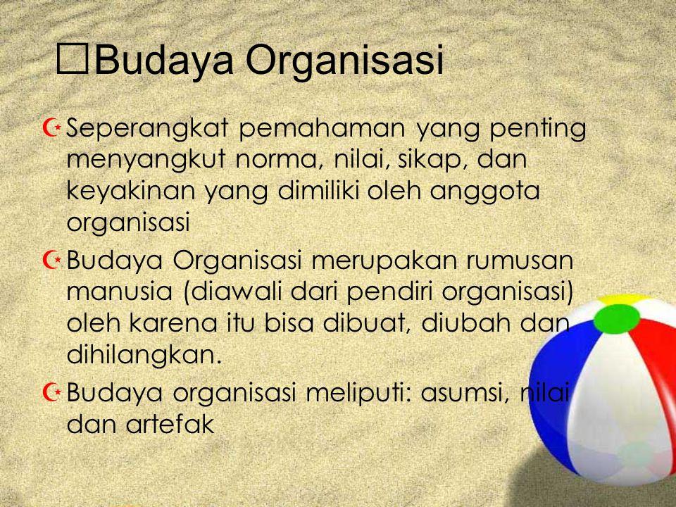 Budaya Organisasi ZSeperangkat pemahaman yang penting menyangkut norma, nilai, sikap, dan keyakinan yang dimiliki oleh anggota organisasi ZBudaya Orga