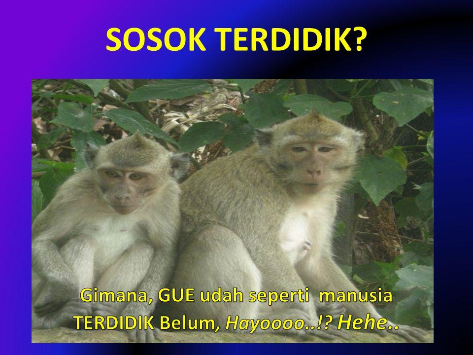 SOSOK TERDIDIK? ? e-mail: arif_rohman@uny.ac.id