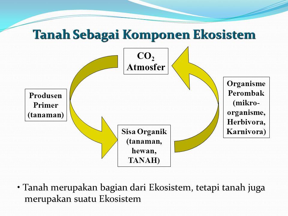 Tanah Sebagai Komponen Ekosistem CO 2 Atmosfer Produsen Primer (tanaman) Sisa Organik (tanaman, hewan, TANAH) Organisme Perombak (mikro- organisme, Herbivora, Karnivora) Tanah merupakan bagian dari Ekosistem, tetapi tanah juga merupakan suatu Ekosistem