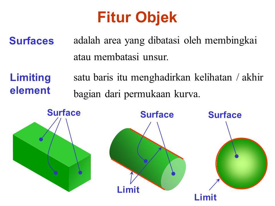 Surfaces adalah area yang dibatasi oleh membingkai atau membatasi unsur.