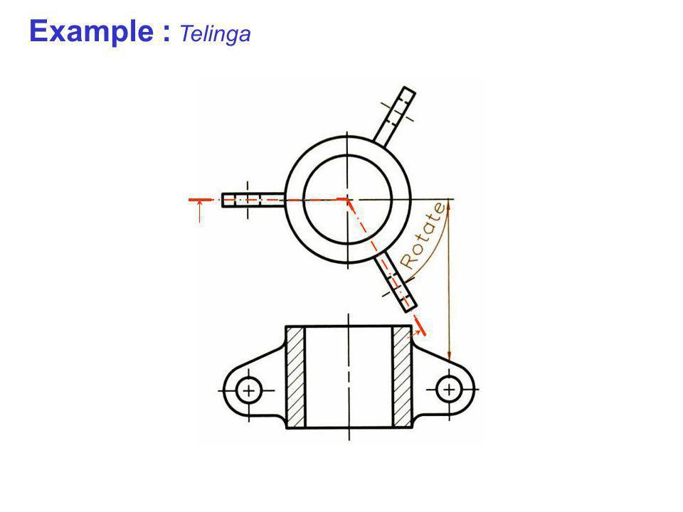 Example : Telinga