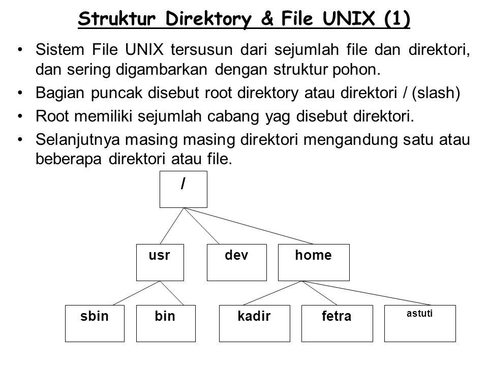 Struktur Direktory & File UNIX (1) Sistem File UNIX tersusun dari sejumlah file dan direktori, dan sering digambarkan dengan struktur pohon. Bagian pu