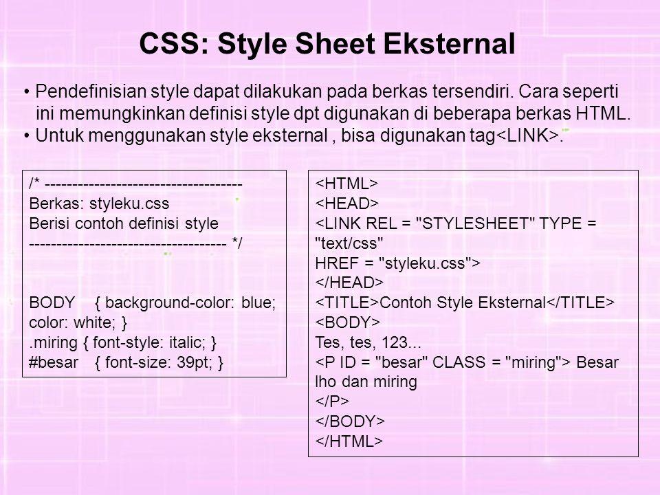 Pendefinisian style dapat dilakukan pada berkas tersendiri. Cara seperti ini memungkinkan definisi style dpt digunakan di beberapa berkas HTML. Untuk