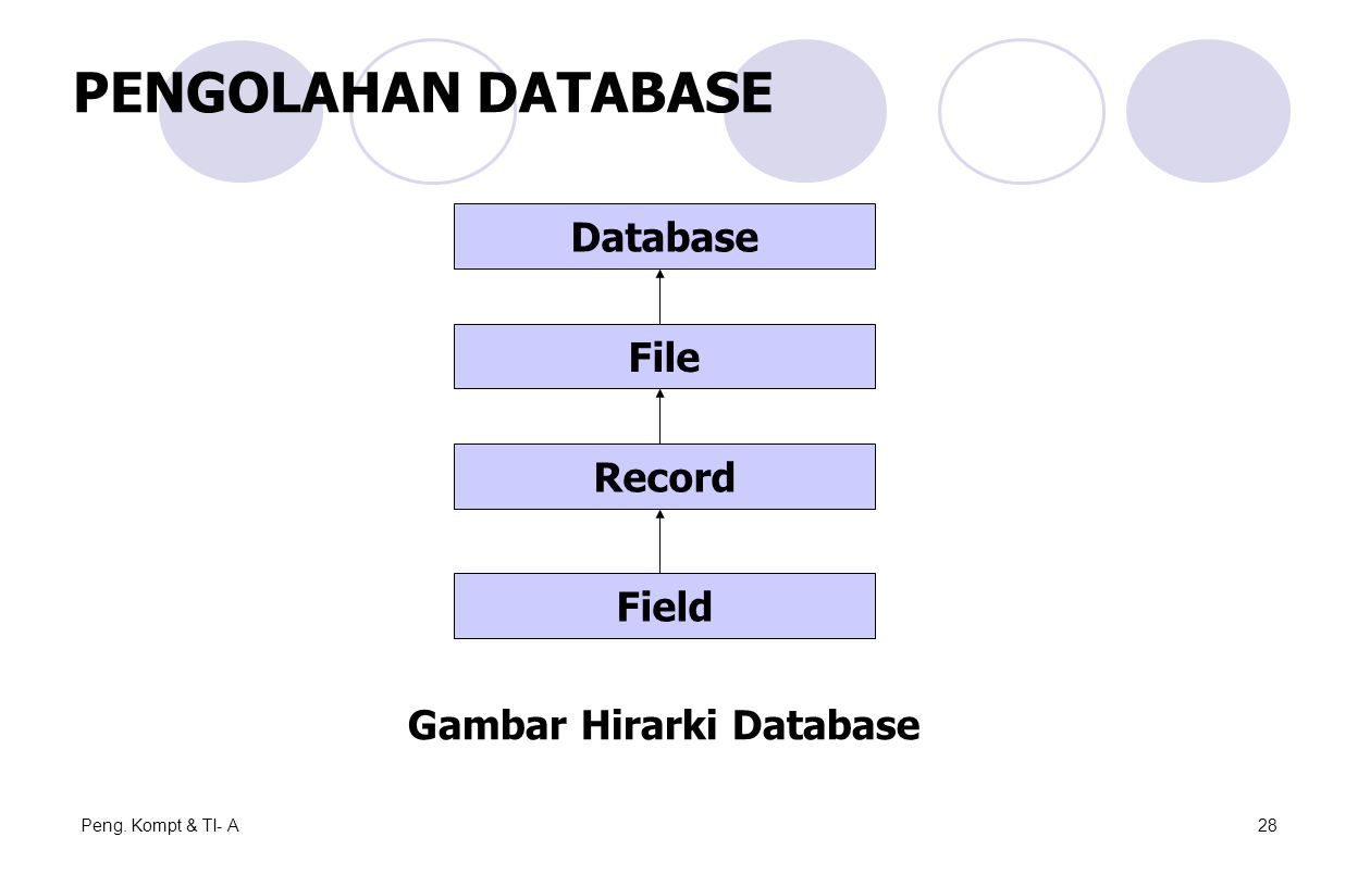Peng. Kompt & TI- A28 Database File Record Field Gambar Hirarki Database PENGOLAHAN DATABASE