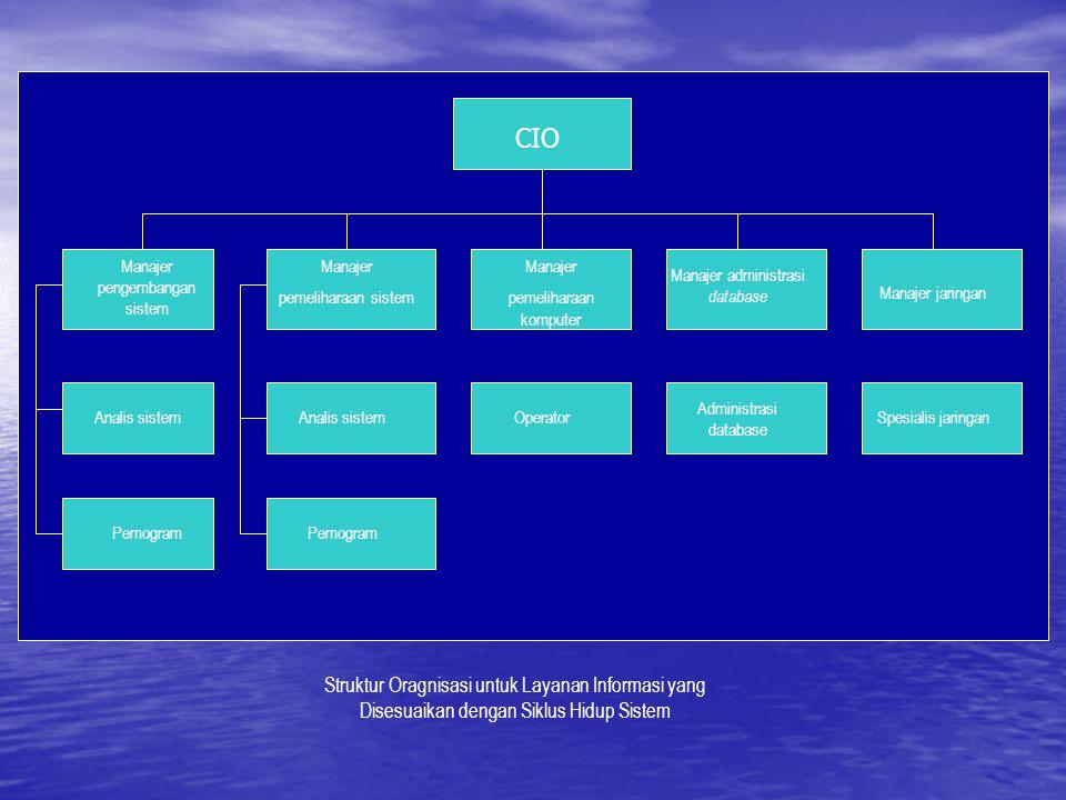 CIO Manajer pengembangan sistem Manajer pemeliharaan sistem Manajer pemeliharaan komputer Manajer administrasi database Manajer jaringan Analis sistem