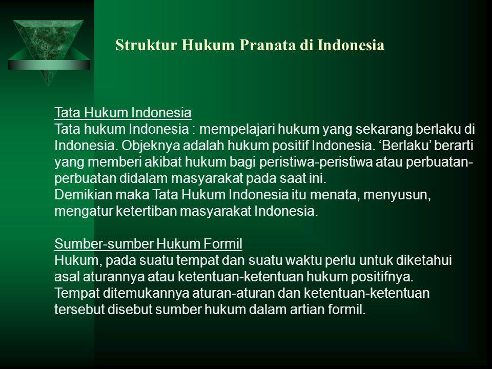 Struktur Hukum Pranata di Indonesia Tata Hukum Indonesia Tata hukum Indonesia : mempelajari hukum yang sekarang berlaku di Indonesia. Objeknya adalah