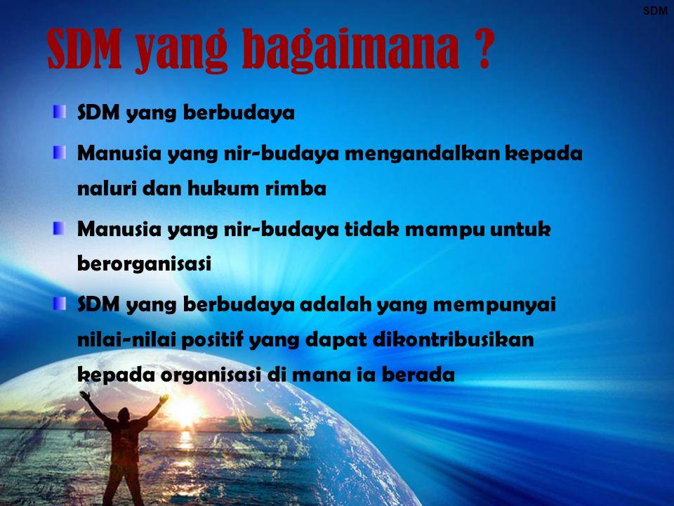 SDM SDM yang bagaimana ? SDM yang berbudaya Manusia yang nir-budaya mengandalkan kepada naluri dan hukum rimba Manusia yang nir-budaya tidak mampu unt