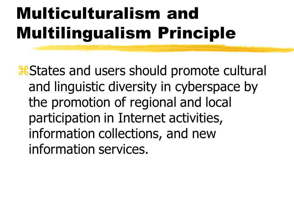 Multiculturalism and Multilingualism Principle zStates and users should promote cultural and linguistic diversity in cyberspace by the promotion of regional and local participation in Internet activities, information collections, and new information services.