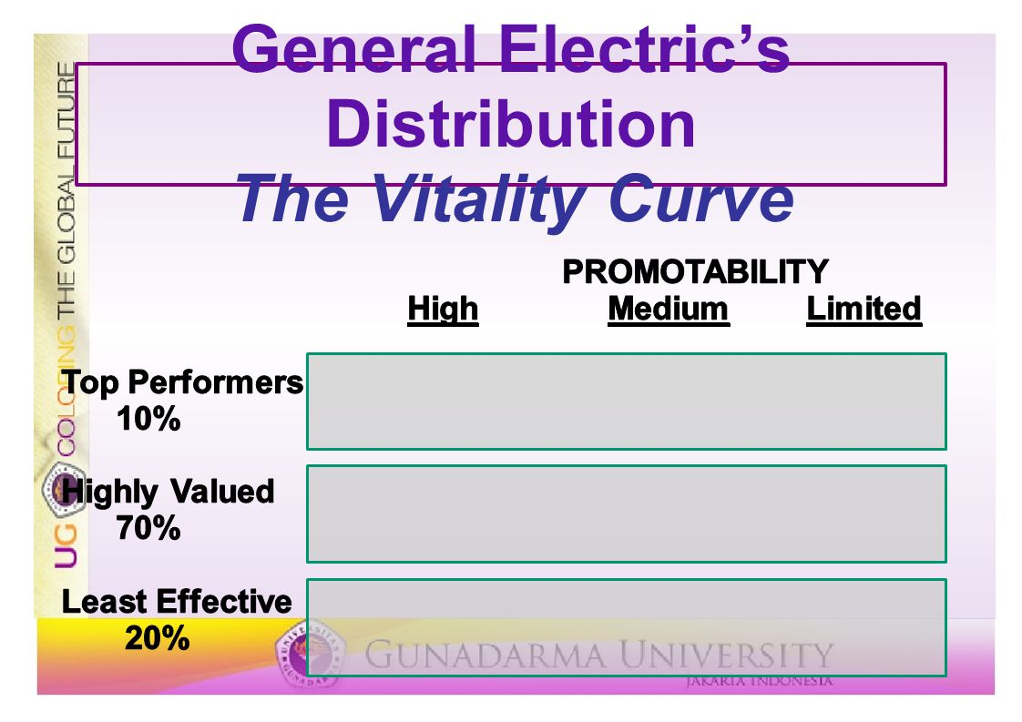 General Electric's Distribution The Vitality Curve