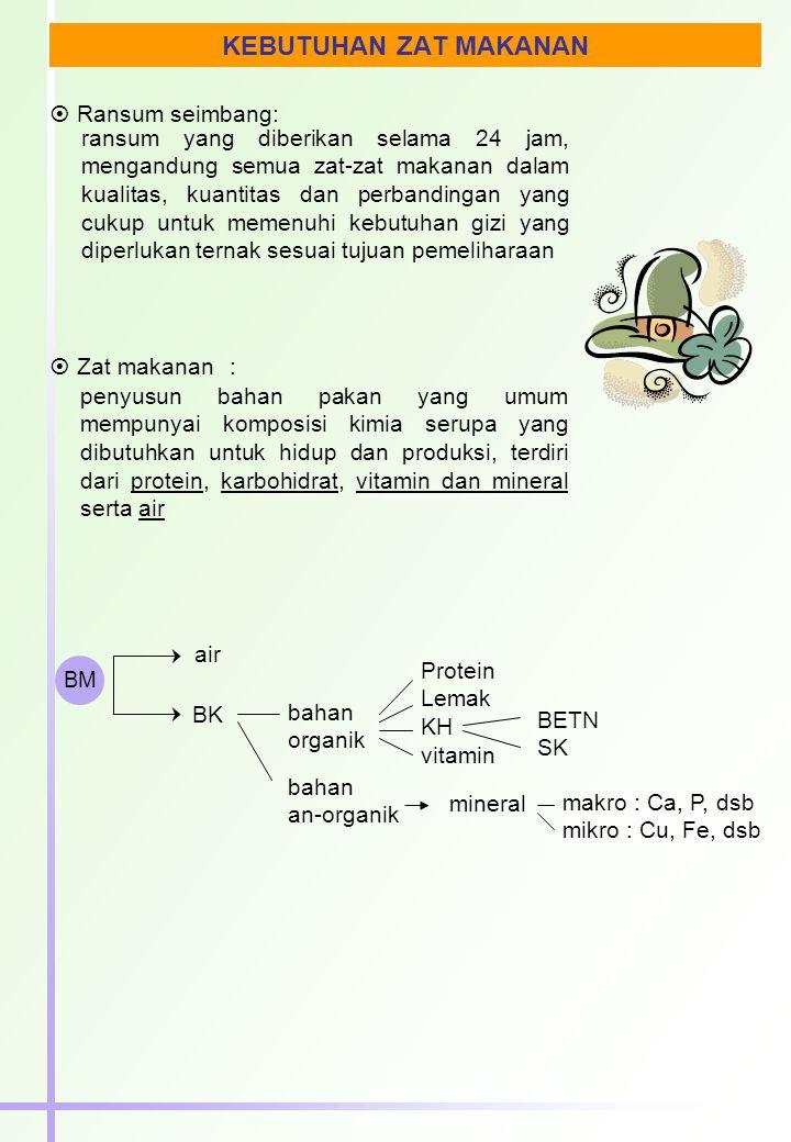  Zat-zat makanan yang dibutuhkan ruminansia : BK; energi; protein; mineral; vitamin BM  pakan harus diketahui : ??.