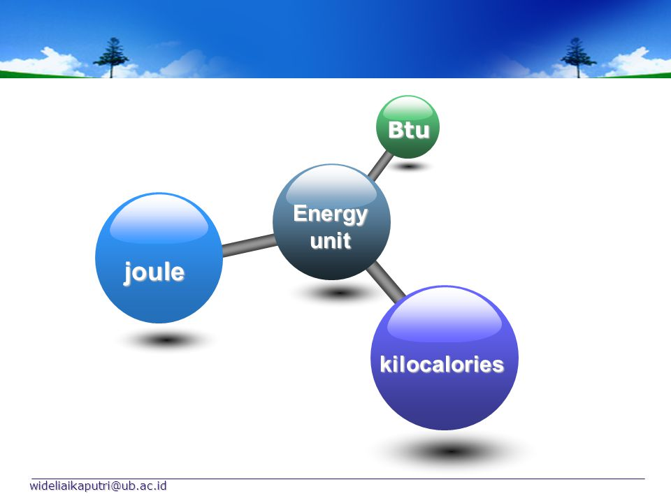 wideliaikaputri@ub.ac.id Energy unit Btu joule kilocalories