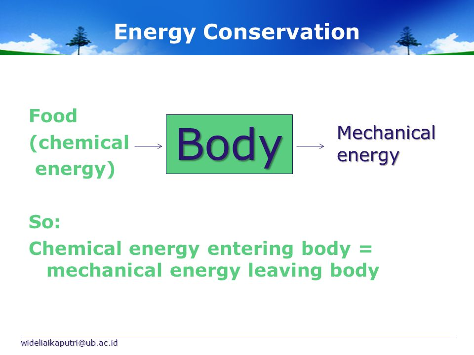 Energy Conservation Food (chemical energy) So: Chemical energy entering body = mechanical energy leaving body wideliaikaputri@ub.ac.id Body Mechanical