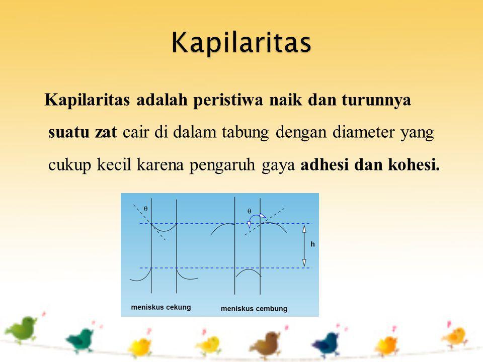 Kapilaritas adalah peristiwa naik dan turunnya suatu zat cair di dalam tabung dengan diameter yang cukup kecil karena pengaruh gaya adhesi dan kohesi.