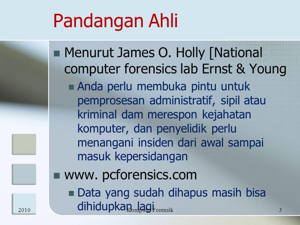 Pandangan Ahli Menurut James O. Holly [National computer forensics lab Ernst & Young Anda perlu membuka pintu untuk pemprosesan administratif, sipil a