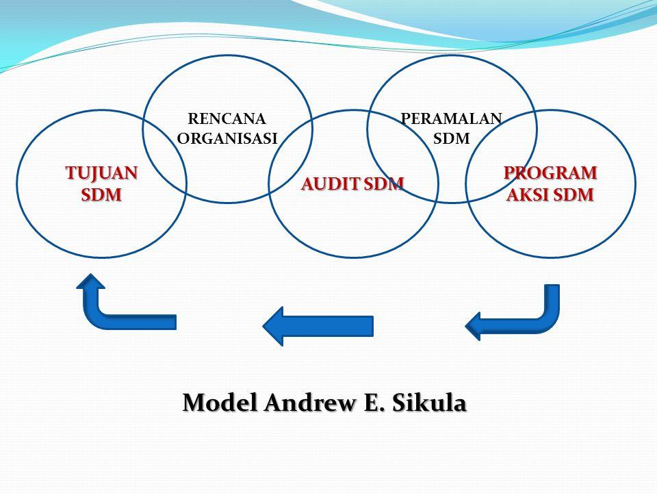TUJUAN SDM RENCANA ORGANISASI AUDIT SDM PERAMALAN SDM PROGRAM AKSI SDM Model Andrew E. Sikula