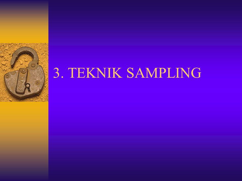 3. TEKNIK SAMPLING