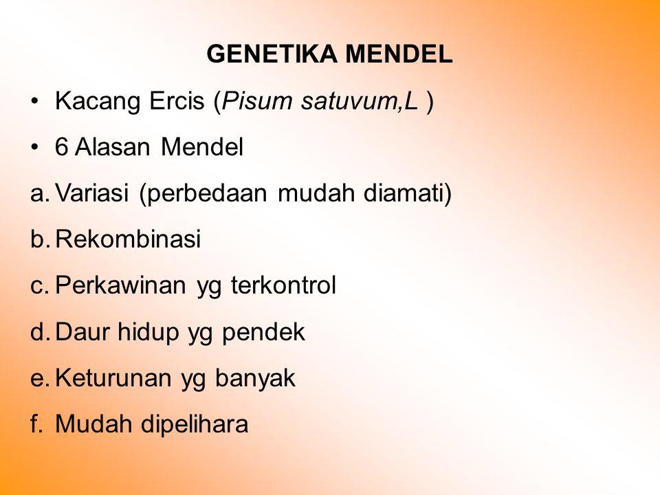 GENETIKA MENDEL Kacang Ercis (Pisum satuvum,L ) 6 Alasan Mendel a.Variasi (perbedaan mudah diamati) b.Rekombinasi c.Perkawinan yg terkontrol d.Daur hidup yg pendek e.Keturunan yg banyak f.Mudah dipelihara