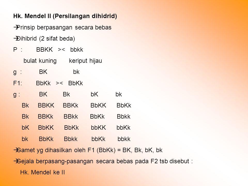 Hk. Mendel II (Persilangan dihidrid)  Prinsip berpasangan secara bebas  Dihibrid (2 sifat beda) P : BBKK >< bbkk bulat kuning keriput hijau g : BK b