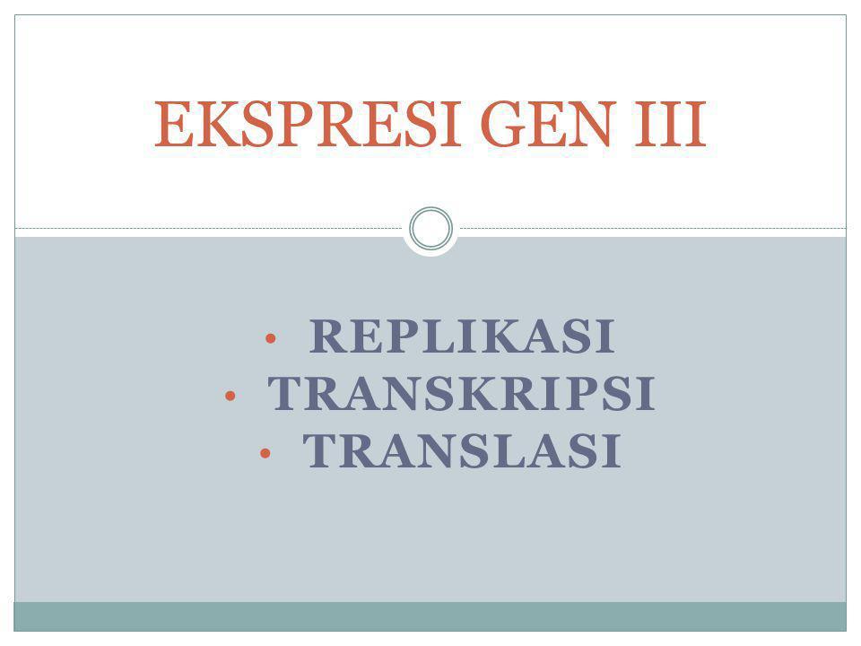 REPLIKASI TRANSKRIPSI TRANSLASI EKSPRESI GEN III