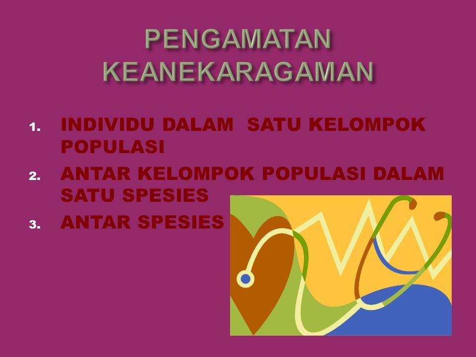 1. INDIVIDU DALAM SATU KELOMPOK POPULASI 2. ANTAR KELOMPOK POPULASI DALAM SATU SPESIES 3. ANTAR SPESIES