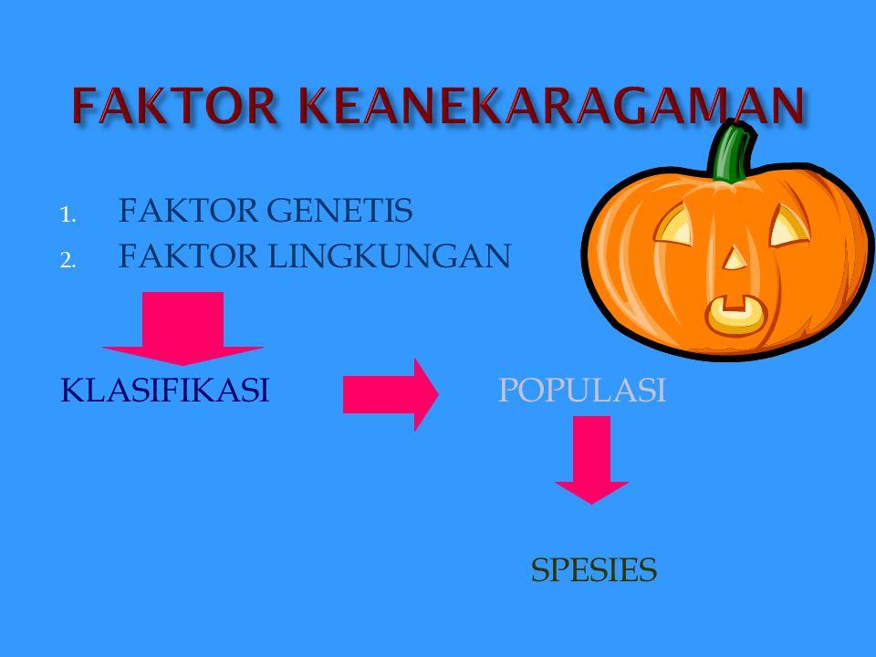 FAKTOR PEMBENTUK : 1.GENETIS 2. UMUR 3. JENIS KELAMIN 4.