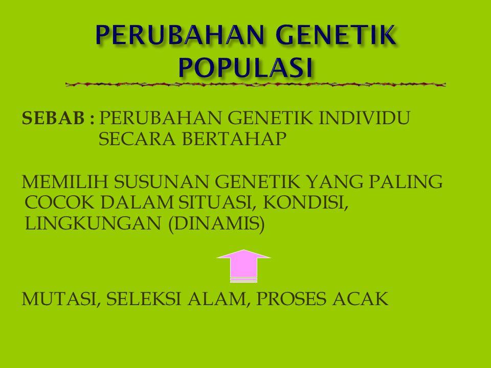 1.PERUBAHAN STRUKTUR GENETIK SPESIES (perbedaan struktur dan ekspresi) 2.