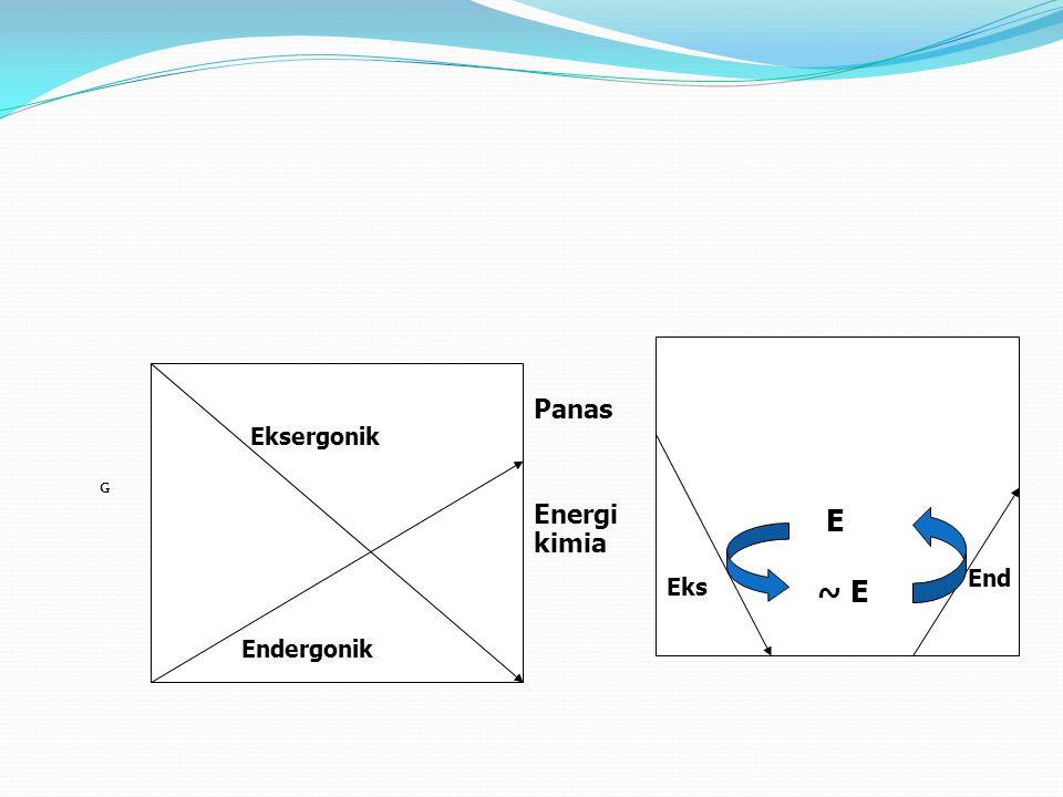G E ~ E Eks End Eksergonik Endergonik Panas Energi kimia