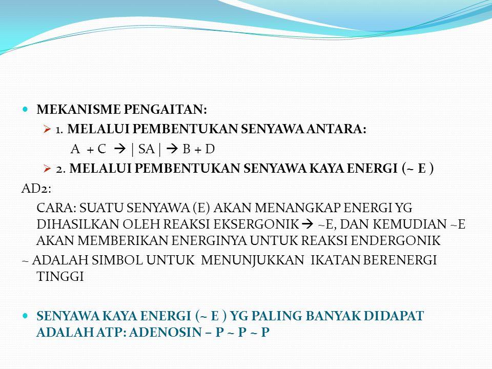 MEKANISME PENGAITAN:  1. MELALUI PEMBENTUKAN SENYAWA ANTARA: A + C  | SA |  B + D  2. MELALUI PEMBENTUKAN SENYAWA KAYA ENERGI (~ E ) AD2: CARA: SU
