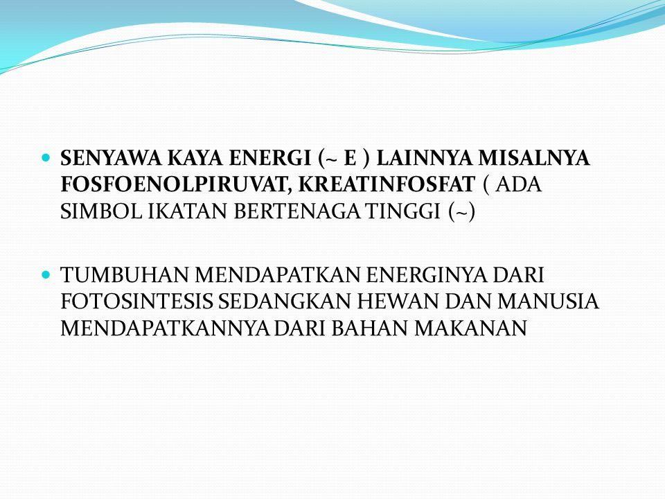 SENYAWA KAYA ENERGI (~ E ) LAINNYA MISALNYA FOSFOENOLPIRUVAT, KREATINFOSFAT ( ADA SIMBOL IKATAN BERTENAGA TINGGI (~) TUMBUHAN MENDAPATKAN ENERGINYA DA