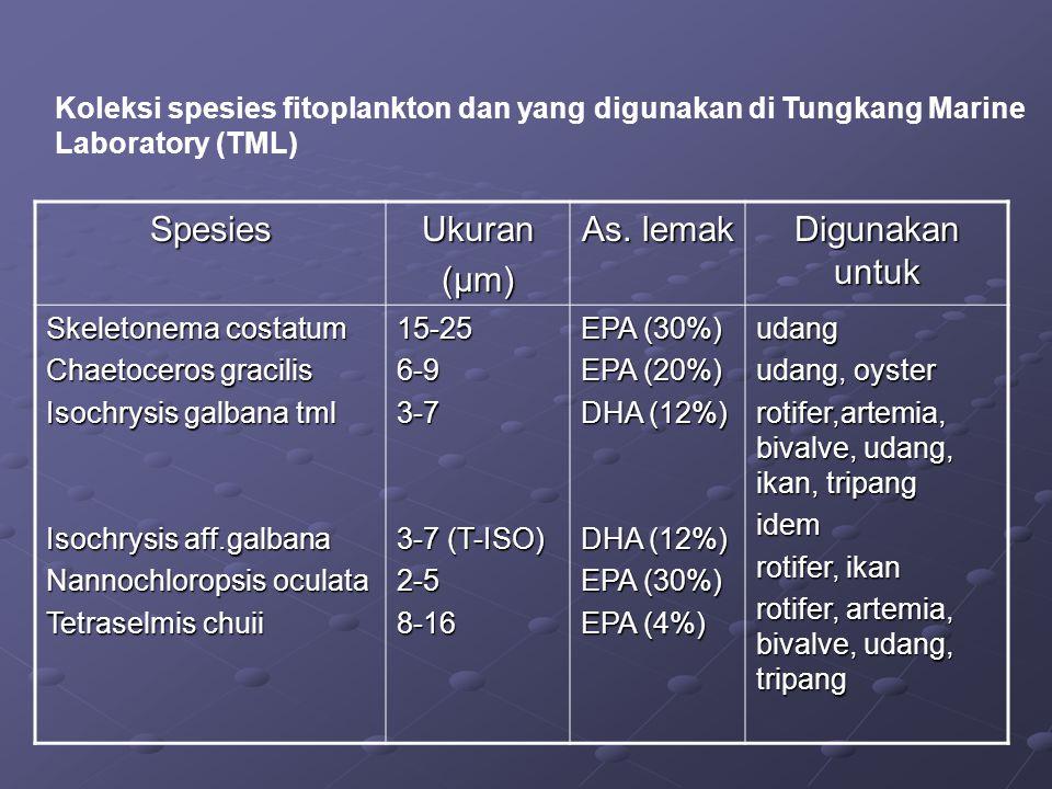 Koleksi spesies fitoplankton dan yang digunakan di Tungkang Marine Laboratory (TML) SpesiesUkuran (µm) As. lemak Digunakan untuk Skeletonema costatum