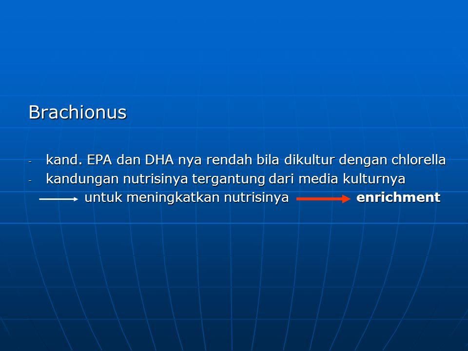 Brachionus - kand. EPA dan DHA nya rendah bila dikultur dengan chlorella - kandungan nutrisinya tergantung dari media kulturnya untuk meningkatkan nut