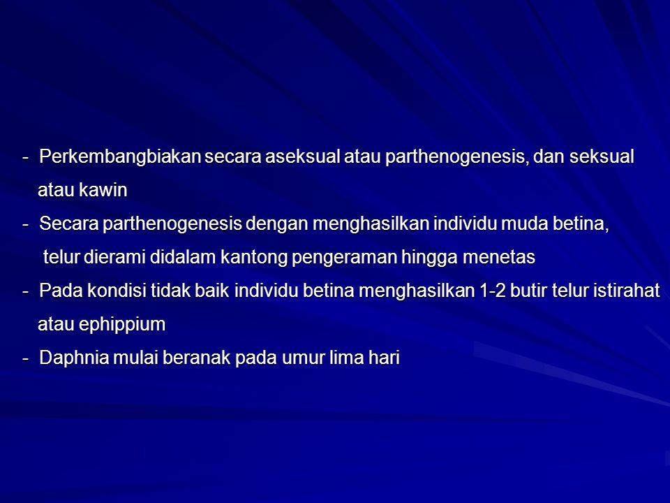 - Perkembangbiakan secara aseksual atau parthenogenesis, dan seksual atau kawin - Secara parthenogenesis dengan menghasilkan individu muda betina, ata